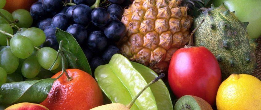 European Fruit Logistics